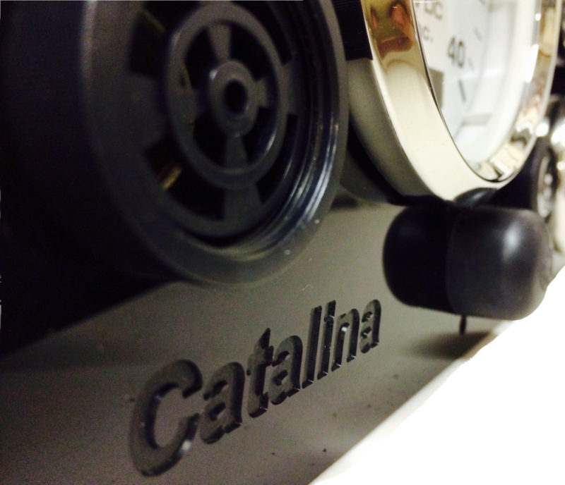 catalina logo shot for panel